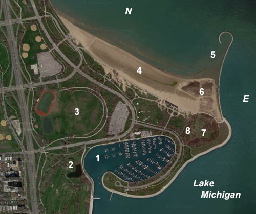 Aerial Photo of Montrose Point
