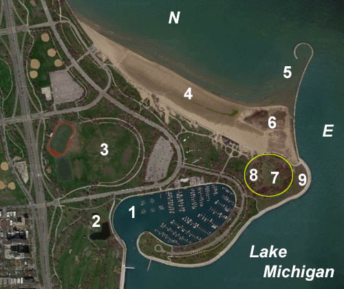 Aerial Photo of Montrose Point. Courtesy of the United States Geologic Survey.