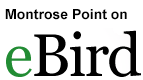 Montrose Point eBird Hotspot
