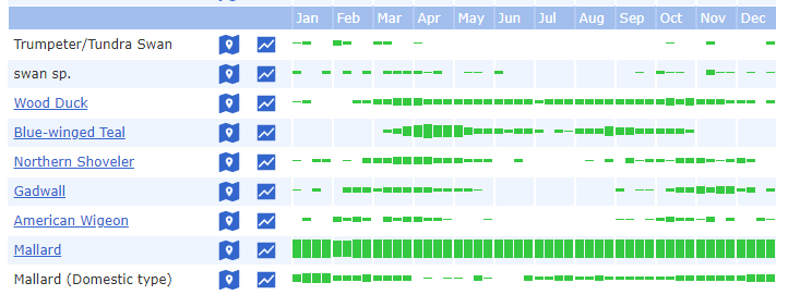 eBird bar chart screenshot