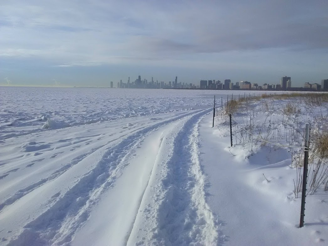 Montrose Point, with the Chicago skyline in the background