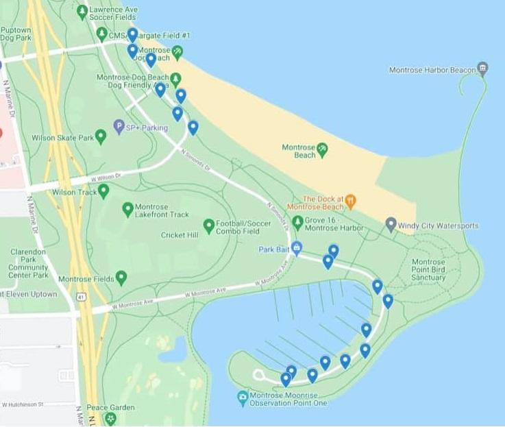 Montrose Parking Meter Map